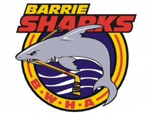 Barrie Women's Hockey Association