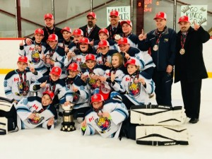Sports Medicine's Atom AE team wins OMHA Gold Mar 25 2018